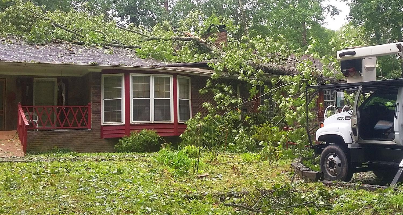 Emergency Tree Removal Snellville, Loganville, Lawrenceville, Gwinnett Grayson - U-savemore Tree Service