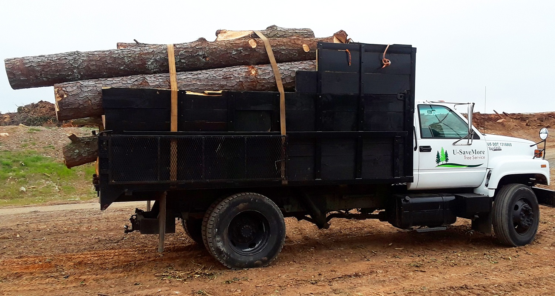 Tree Removal and Trimming Services, Snellville, Loganville, Grayson, Lilburn, Monroe - U-SaveMore Tree Service