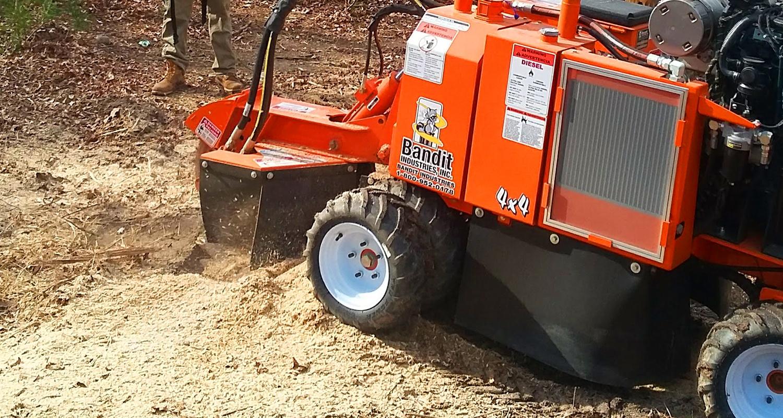 Stump Grinding Snellville, Loganville, Grayson, Lawrenceville, Gwinnett - U-Savemore Tree Service