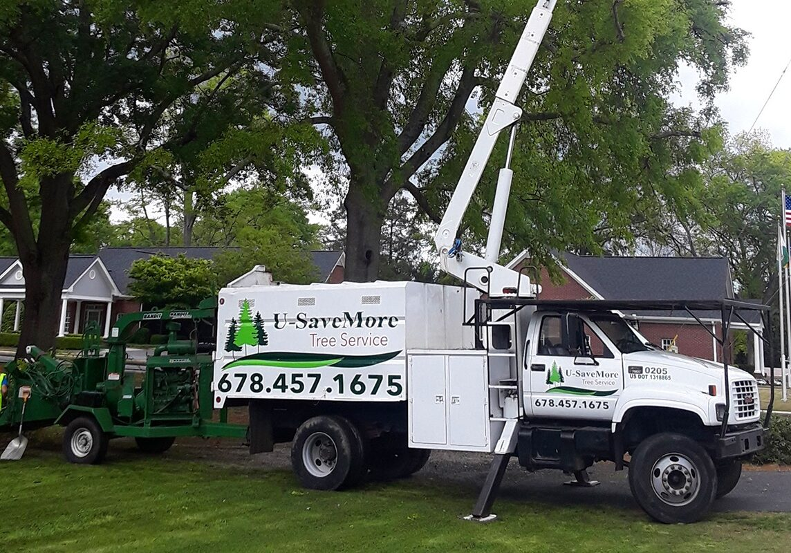 U-SaveMore Tree Service Snellville, GA - Tree Removal and Trimming Service - Gwinnett County